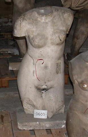 statue  ; venus Ingres