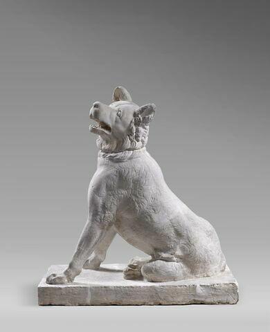 moulage ; statue ; molosse du Belvedere