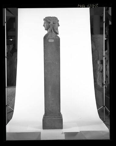 profil © 1998 Musée du Louvre / Patrick Lebaube