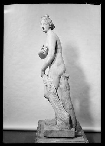 profil gauche © 1975 Musée du Louvre / Maurice et Pierre Chuzeville