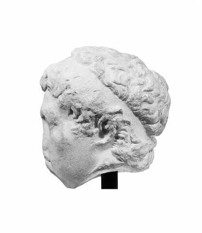 profil gauche © 1994 Musée du Louvre / Christian Larrieu