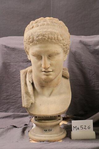 statue  ; Buste d'Hercule