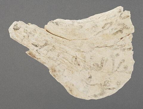 Omoplate inscrite (biface)