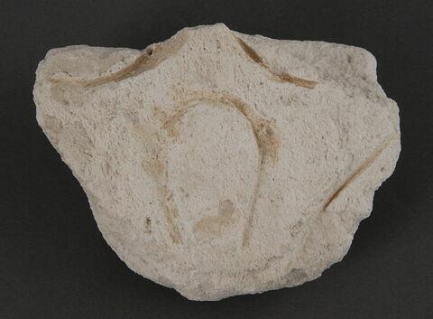 Fragment de stuc à palmette stylisée