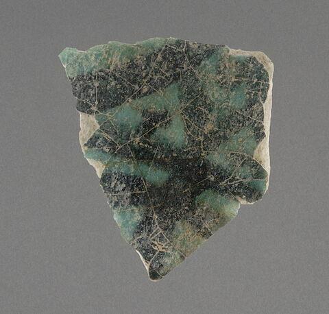 Fragment de à décor végétal + une écaille