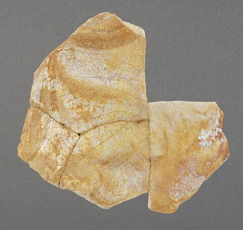 Lot de 11 fragments