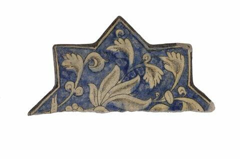 Etoile fragmentaire au lotus