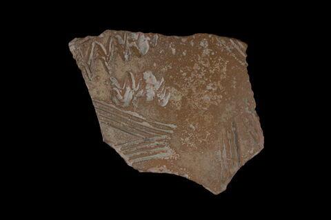 Fragment de vase