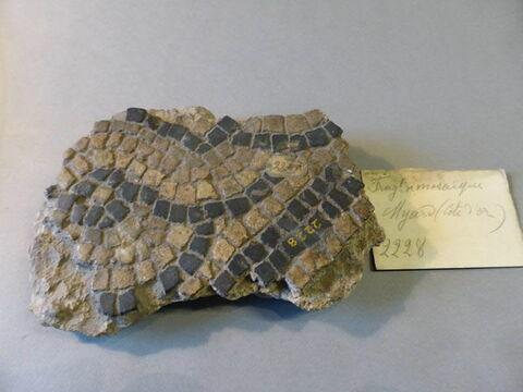 mosaïque ; fragment