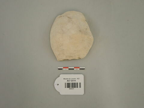 perle ; produit animal ; fragment