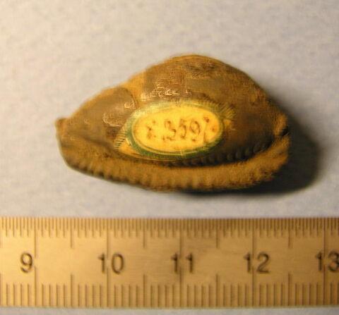 perle cauroïde