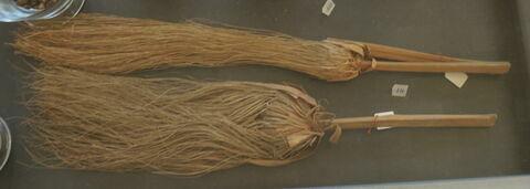 tige de papyrus