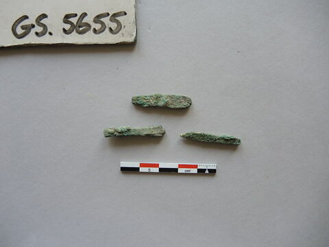 3 ; fragment ; spatule