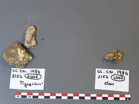 clou ; tige fragment