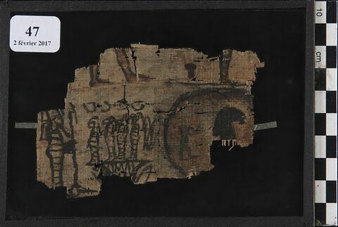 papyrus ; papyrus à vignettes