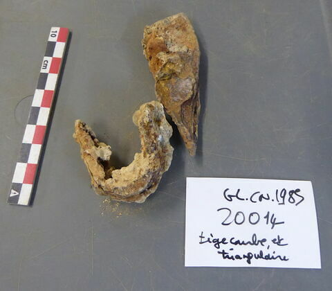 tige fragment ; outil, fragment