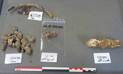clou, fragment ; tige fragment ; ferrure, fragment