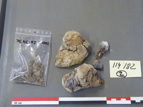 tige fragment ; plaque, fragment