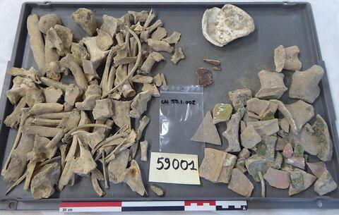 vase, récipient, fragment ; tôle, fragment ; reste animal, os ; reste animal coquillage, fragment