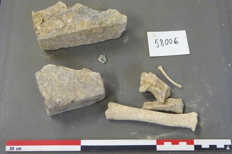 brique, fragment ; reste animal, os