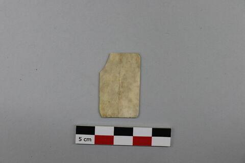 plaquette, fragment