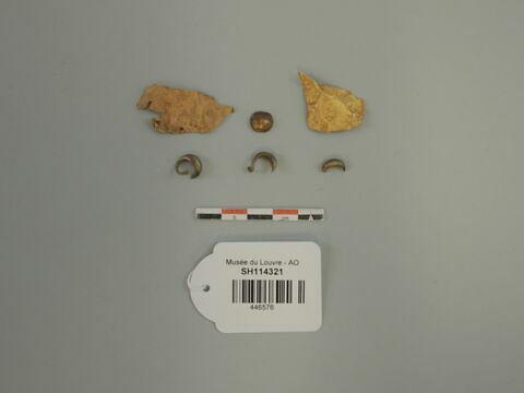 feuille ; fragment ; boucle d'oreille ; applique