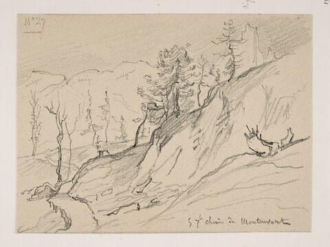 """Album du """"Voyage en Suisse"""". 1864, d'après Constant DUTILLEUX- Arbres à flanc de montagne en allant à Montauvert """"5 Septembre"""""""