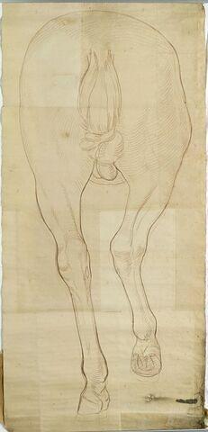 L'arrière train du cheval de la statue équestre de Louis XV