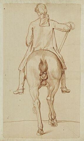 Cavalier et cheval, vus de dos