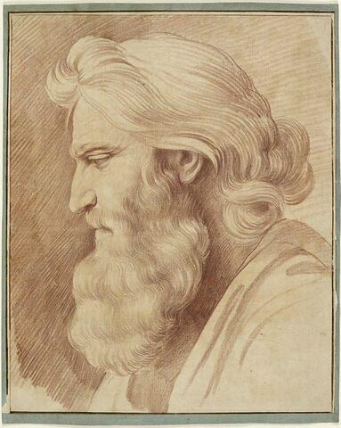 Tête de vieillard avec une longue barbe, de profil vers la gauche