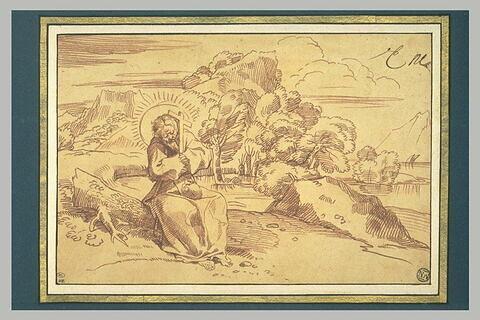 Saint François d'Assise en méditation