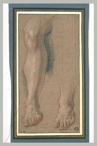 Etude de la jambe d'Anchise ; reprise du pied