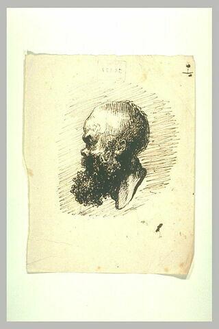 Profil d'homme chauve et barbu