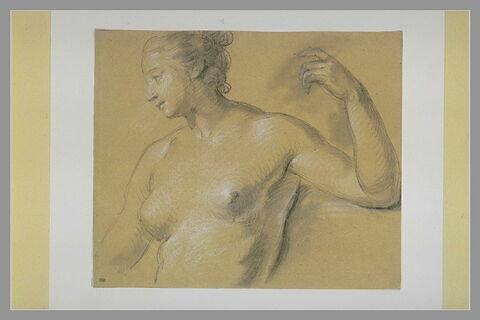 Buste d'une femme nue, le bras gauche levé et replié