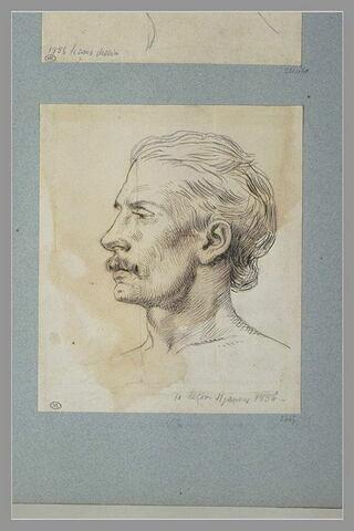 Tête d'homme, vue de profil à gauche