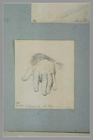 Etude de main