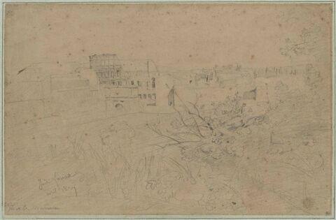 Le Colisée vu des jardins Farnèse