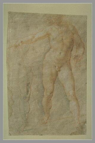 Homme nu, debout, bras droit étendu, et reprise de la hanche et jambe gauche