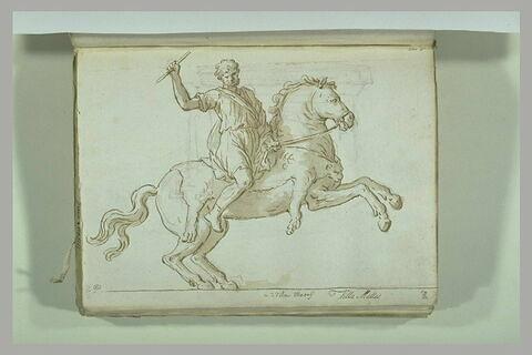 Cavalier drapé sur un cheval cabré