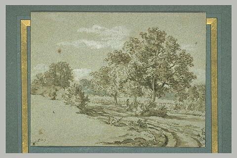 Vue d'un chemin serpentant dans une campagne