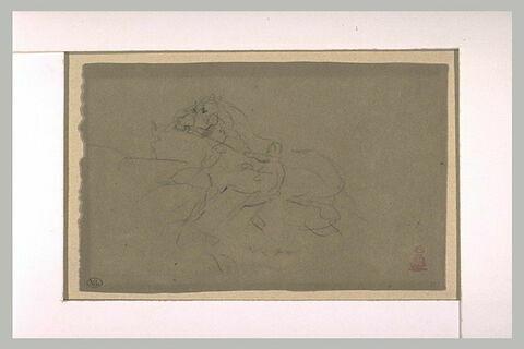 Cheval au trot conduit en main par un palefrenier