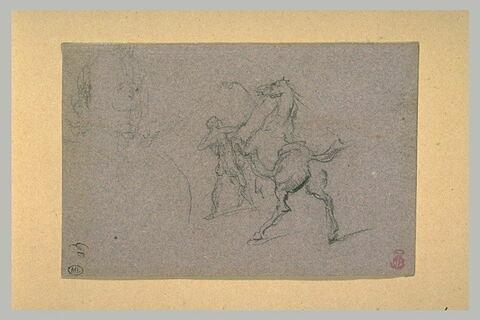 Cheval cabré devant un homme nu qui le tient en bride