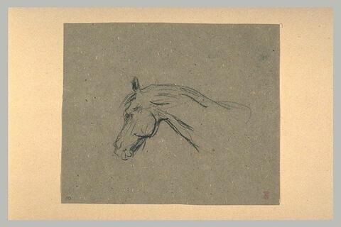 Tête de cheval, de profil vers la gauche