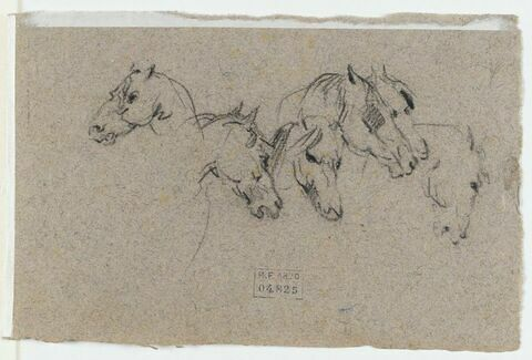 Six têtes de chevaux