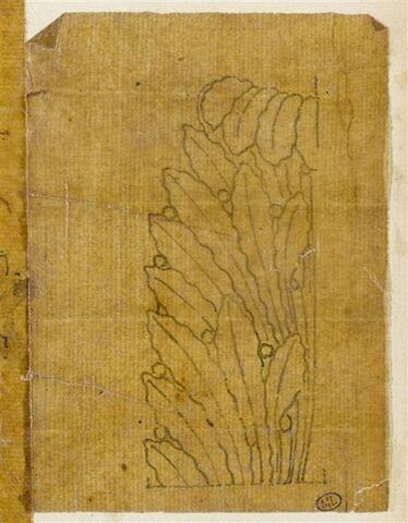 Motif décoratif végétal