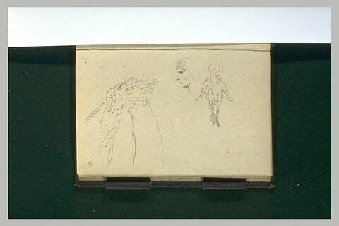 Homme à dos d'âne ; profil ; figure portant un fagot