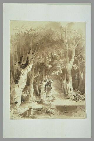 Une allée d'arbres dans le parc de Vaux-le-Vicomte