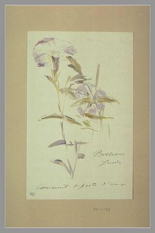 Jeudi (1880), Bellevue, à Isabelle Lemonnier