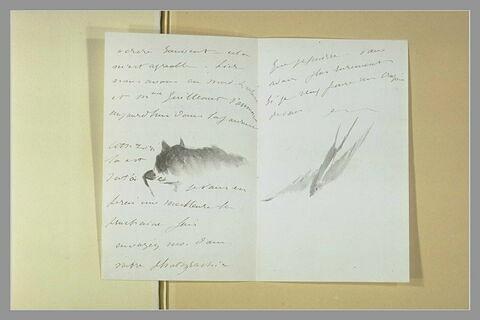 Lettre à Isabelle Lemonnier décorée d'un chat lapant, et d'une hirondelle