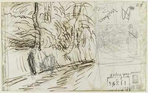 Chemin bordé d'arbres et femme dans un champ